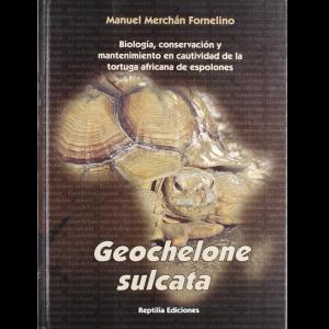 Geochelone sulcata