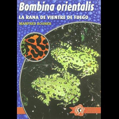 Bombina orientalis