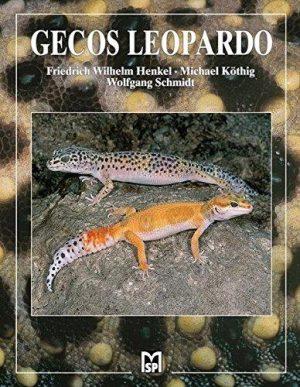 gecos leopardo
