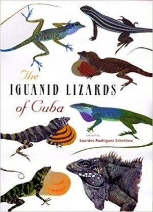 iguanid lizards of cuba